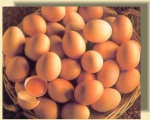 Uova Crude van bene se ho fretta di proteine ?